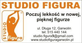 studio figura1